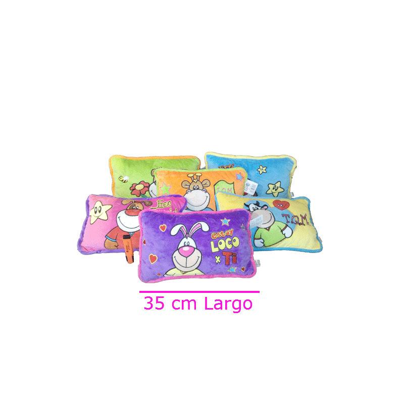 Almohada colorida con frases