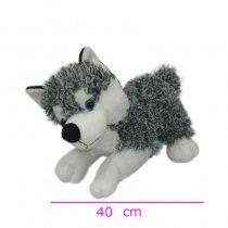 Perro Siberiano con sonido