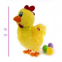 Gallina pone huevos movimiento y sonido